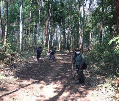 ทีมงานชาวช้างช่วยป่า จากฟาร์มช้างภัทรและทีมดับไฟหมู่บ้านแม่ฮะ